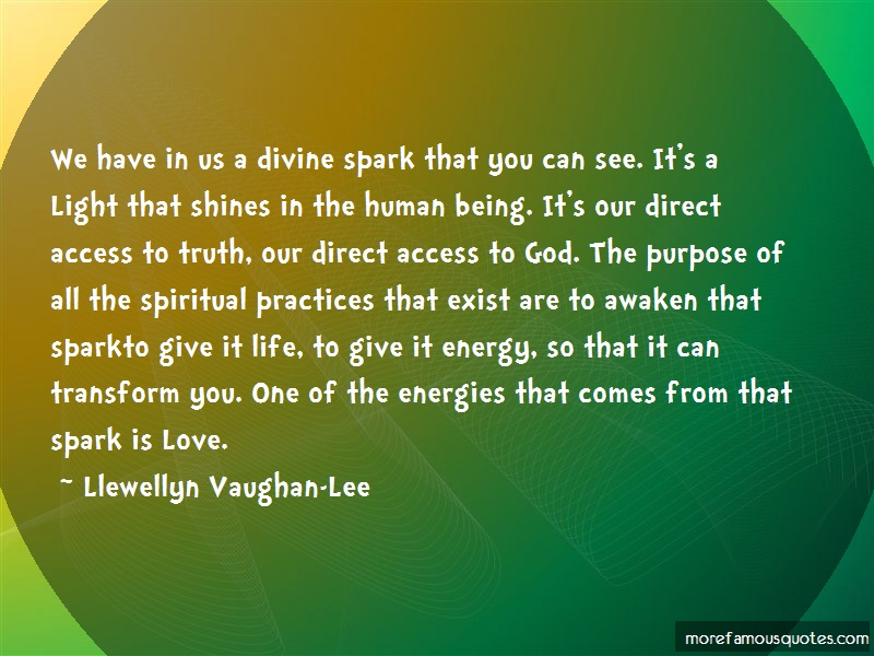 Llewellyn Vaughan-Lee Quotes: We have in us a divine spark that you