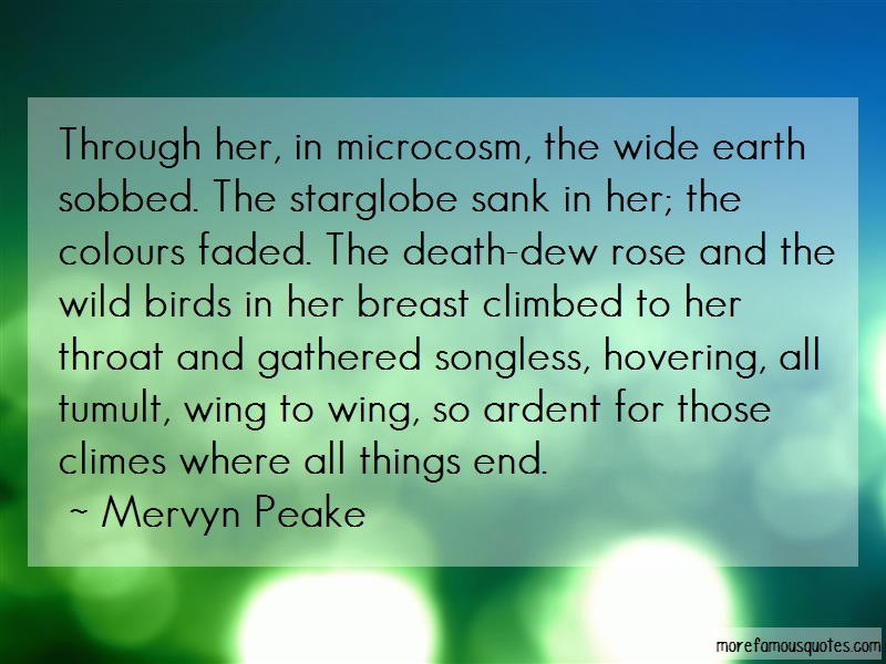 Mervyn Peake Quotes: Through her in microcosm the wide earth