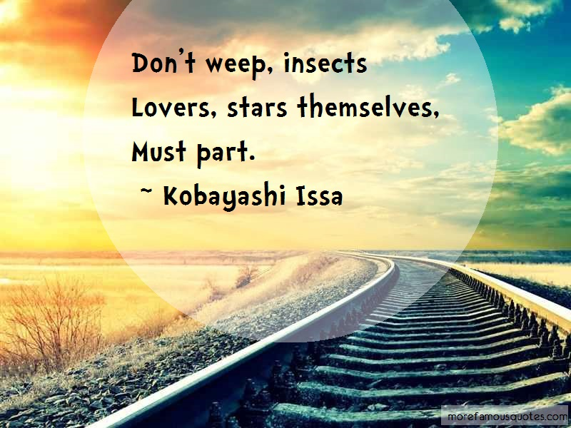 Kobayashi Issa Quotes: Dont weep insects lovers stars