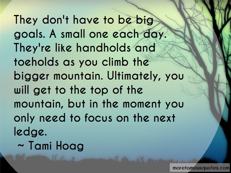 Tami Hoag Quotes: They dont have to be big goals a small