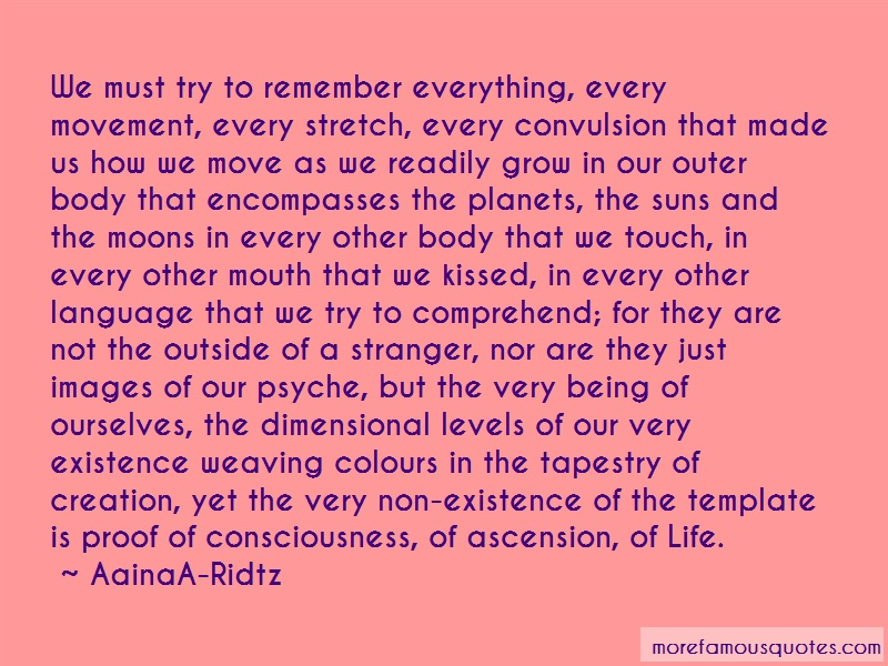 AainaA-Ridtz Quotes: We Must Try To Remember Everything Every