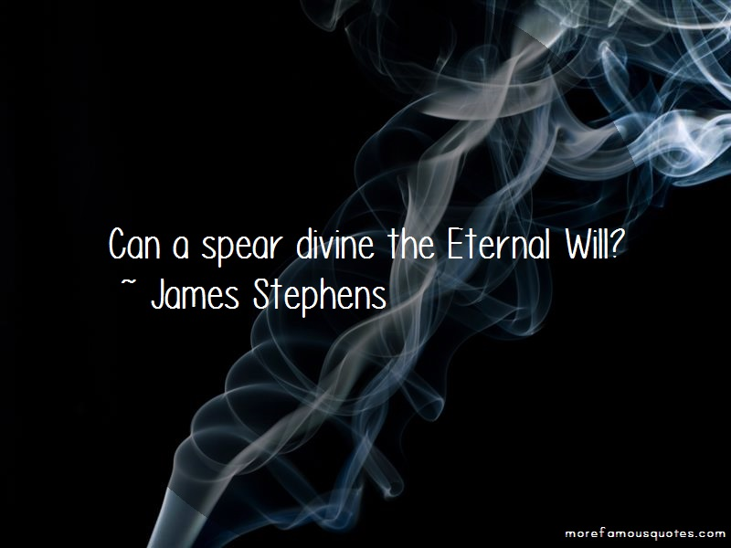 James Stephens Quotes: Can a spear divine the eternal will