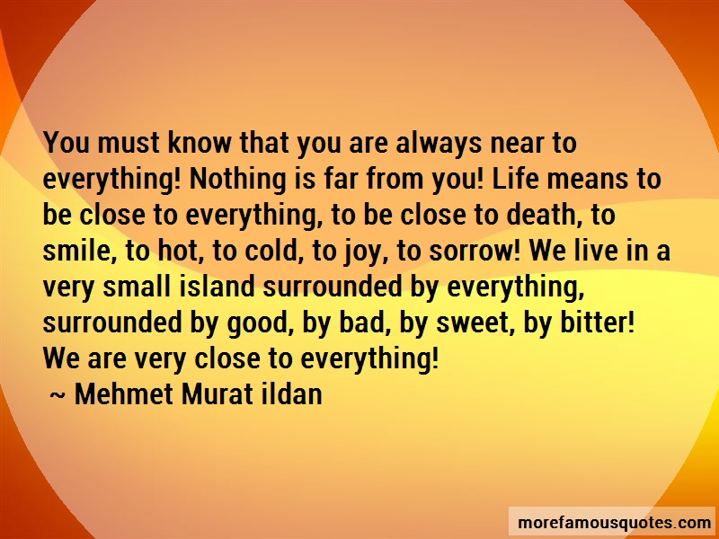 Mehmet Murat Ildan Quotes: You Must Know That You Are Always Near