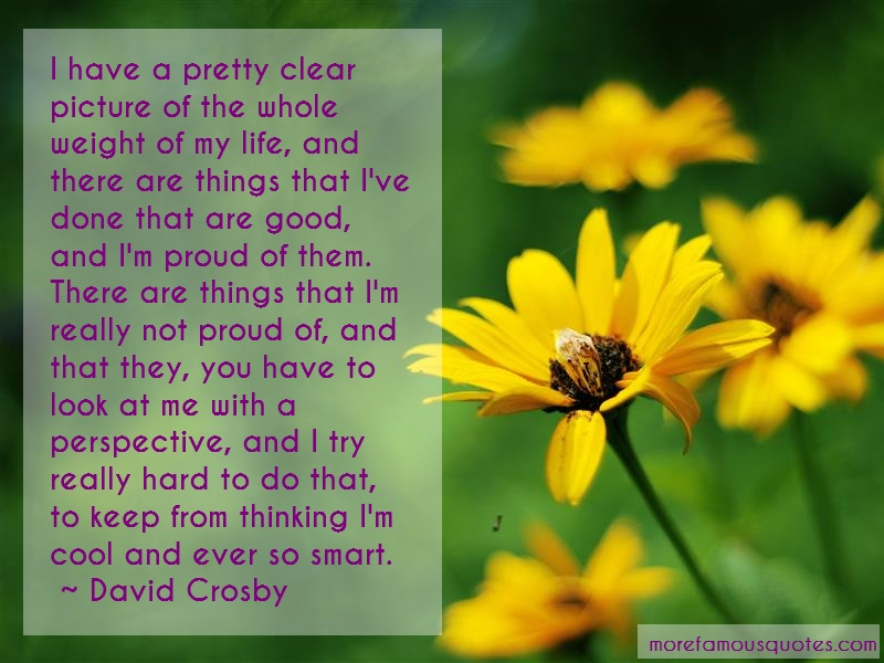 David Crosby Quotes: I have a pretty clear picture of the