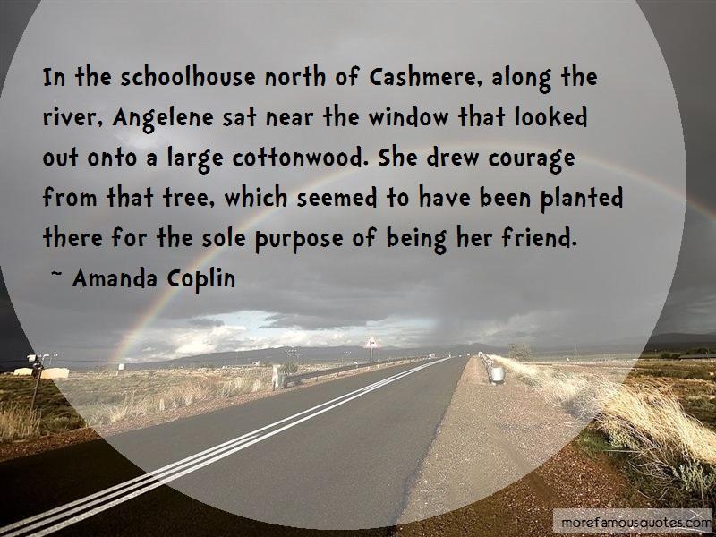 Amanda Coplin Quotes: In The Schoolhouse North Of Cashmere