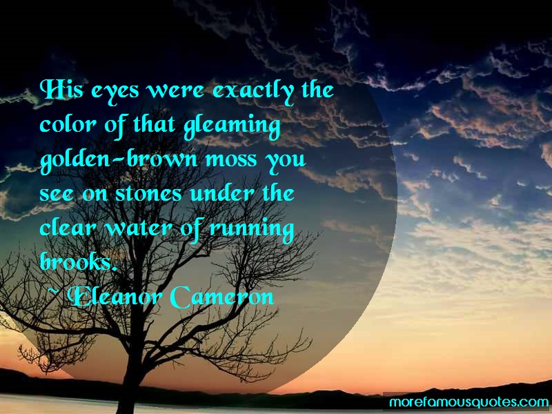 Eleanor Cameron Quotes: His Eyes Were Exactly The Color Of That