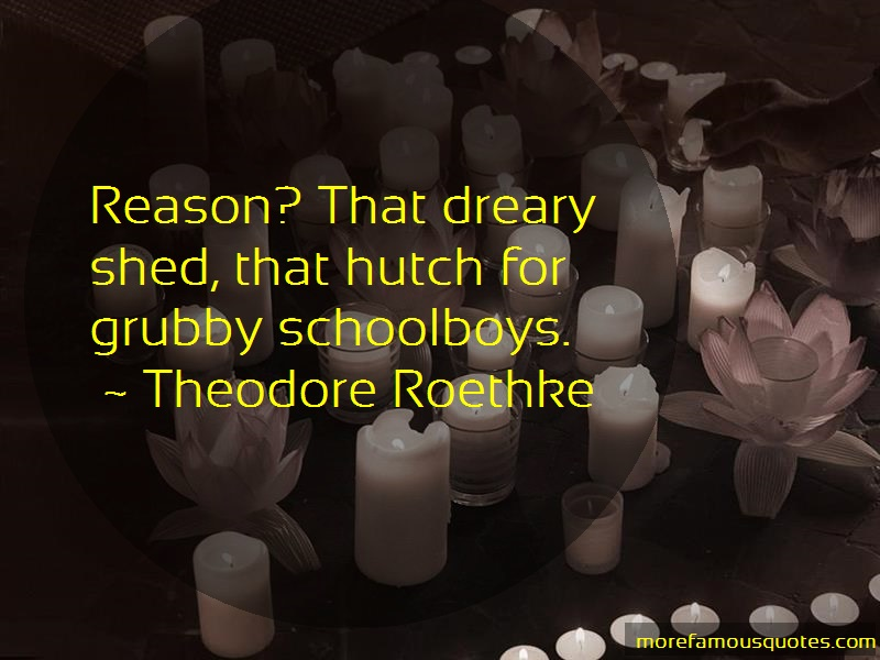 Theodore Roethke Quotes: Reason that dreary shed that hutch for