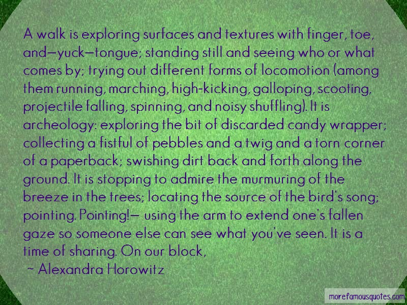 Alexandra Horowitz Quotes: A Walk Is Exploring Surfaces And