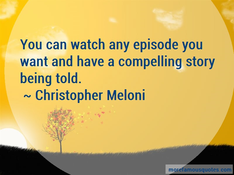 Christopher Meloni Quotes: You can watch any episode you want and