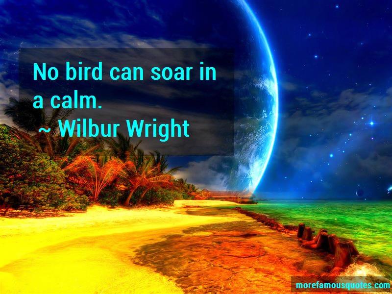 Wilbur Wright Quotes: No bird can soar in a calm