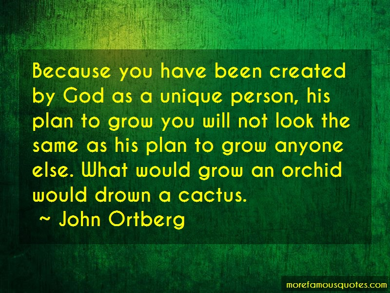 John Ortberg Quotes: Because you have been created by god as
