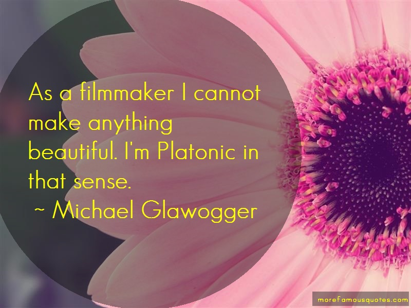Michael Glawogger Quotes: As A Filmmaker I Cannot Make Anything