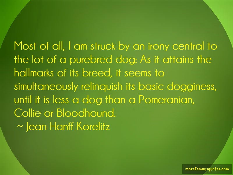 Jean Hanff Korelitz Quotes: Most Of All I Am Struck By An Irony
