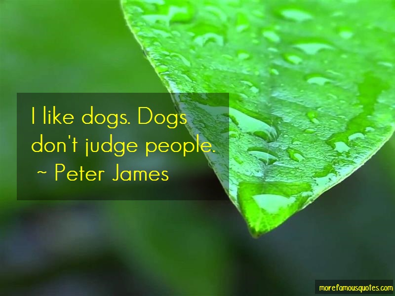 Peter James Quotes: I Like Dogs Dogs Dont Judge People