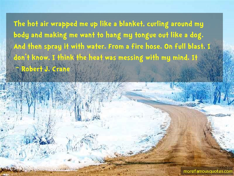 Robert J. Crane Quotes: The Hot Air Wrapped Me Up Like A Blanket