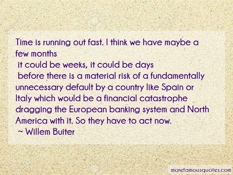 Willem Buiter Quotes: Time Is Running Out Fast I Think We Have