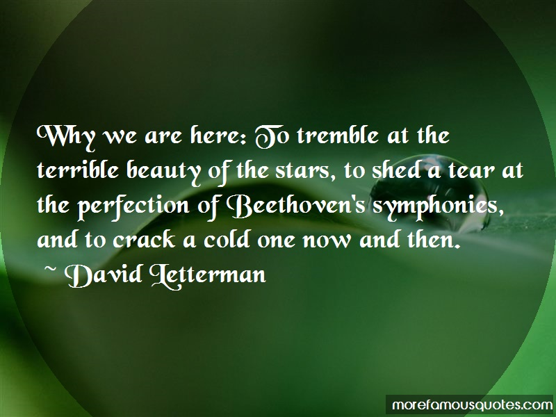 David Letterman Quotes: Why We Are Here To Tremble At The